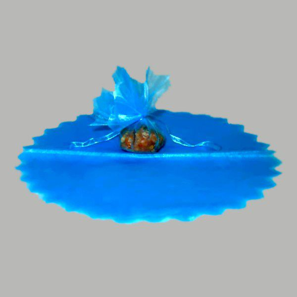 10 RONDS DE TULLE VOILE - TURQUOISE