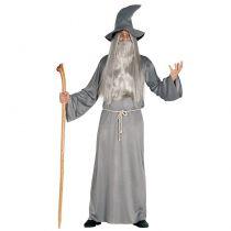 déguisement magicien adulte