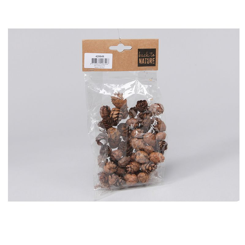 MINI POMMES DE PIN NATUREL 40G