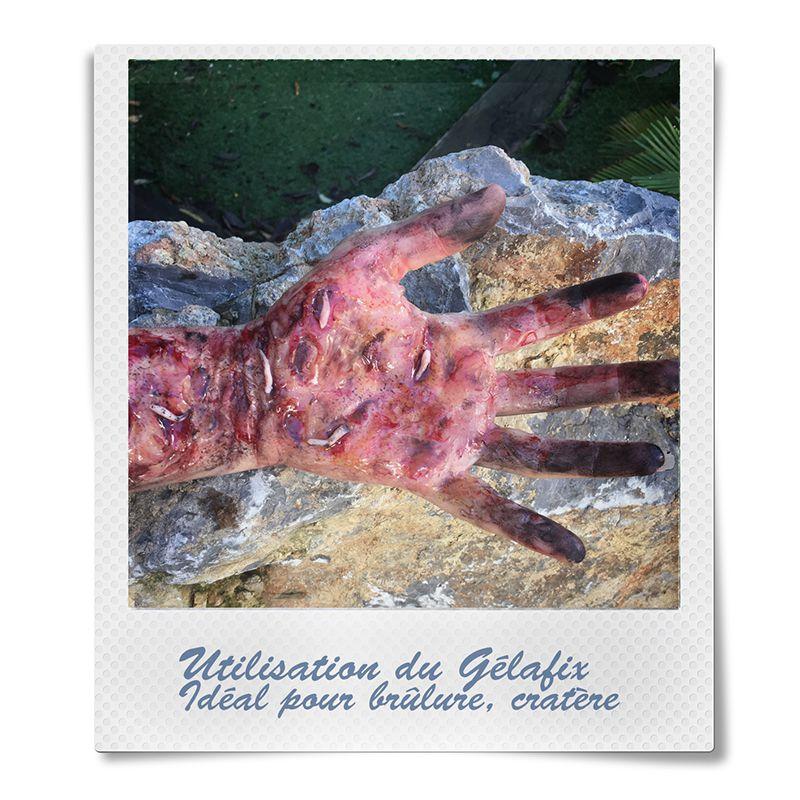 PAIN DE GÉLATINE GELAFIX 60 G