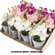 1 ORCHIDÉE EN POT CÉRAMIQUE 3 ASSORTIS