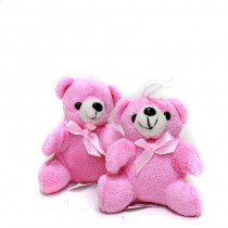 2 OURSONS ROSE ASSIS PELUCHE 9 CM
