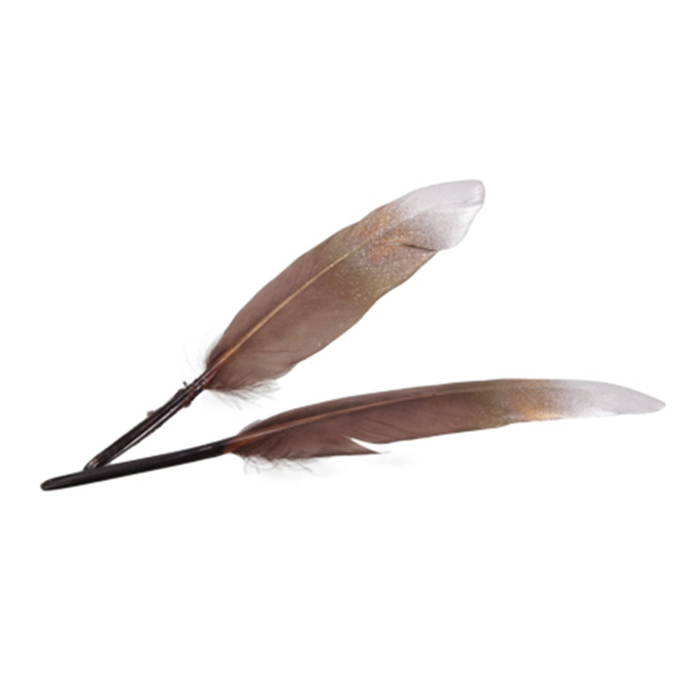 24 PLUMES D\'OIE NATURE 12-13CM MARRON OR ARGENT