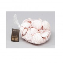 sachet de 500 g de coquillages blancs
