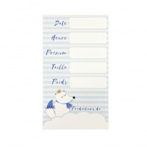 6 CARTES PRÉDICTION BABY SHOWER BLEU