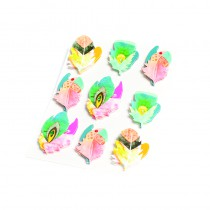 9 STICKERS PLUMES GYPSY 5 X 3 CM