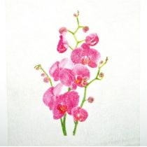 CHEMIN DE TABLE ORCHIDÉES 28CM*5M
