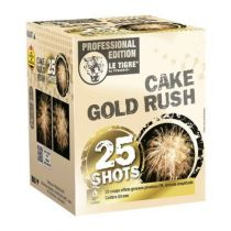 COMPACT PRO EDITION CAKE 25 COUPS