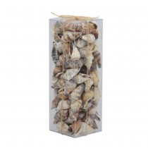 COQUILLAGES STROMBUS URCEUS 200 GR NATURE