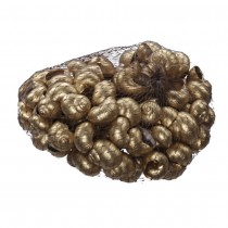COQUILLES PETITS ESCARGOTS 250 GRAMMES OR