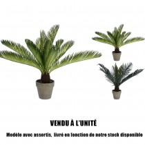 CYCAS ARTIFICIEL EN POT 50CM
