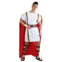 DÉGUISEMENT DE ROMAIN HOMME