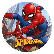 DISQUE AZYME 20CM SPIDERMAN