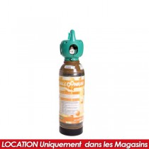 LOCATION BOUTEILLE HELIUM X10