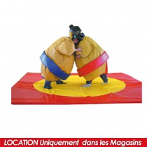 LOCATION SUMO ADULTE+CASQUES+TAPIS