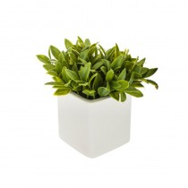 PLANTE ARTIFICIELLE POT CÉRAMIQUE 17CM