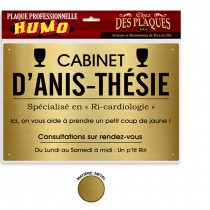 PLAQUE PROFESSIONNELLE ANIS-THES