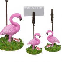 marque place flamant rose