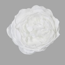 ROSE ANCIENNE SOFT BLANCHE 12 CM
