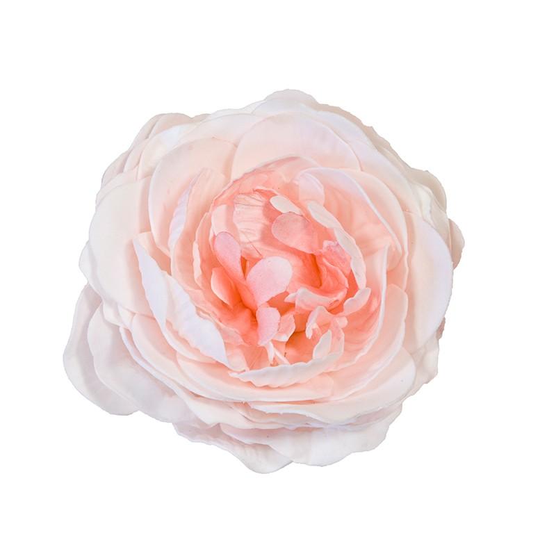 ROSE ANCIENNE SOFT ROSE PÂLE 12 CM