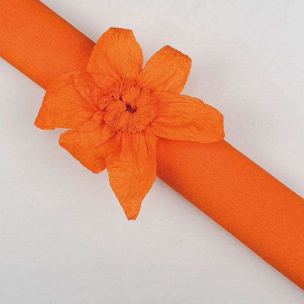 ROULEAU CRÉPON ORANGE 10 X 0,5 M