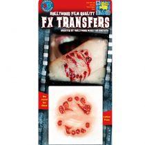 TRANSFERT 3D GROSSE MORSURE